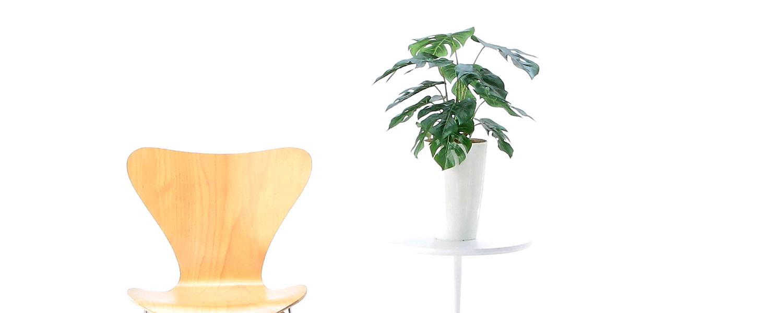 光触媒 フェイクグリーン 造花 人工 観葉植物 高さ50~100cm