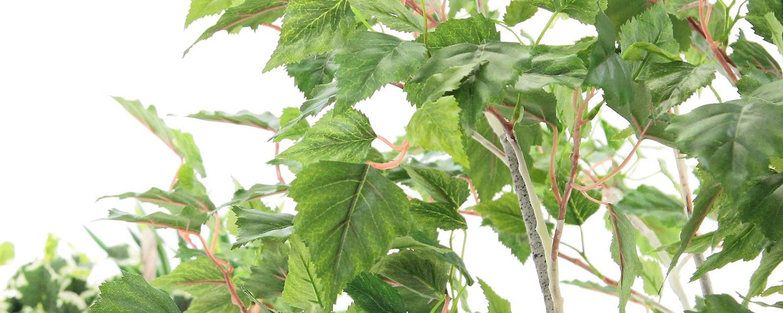 フェイクグリーン 白樺
