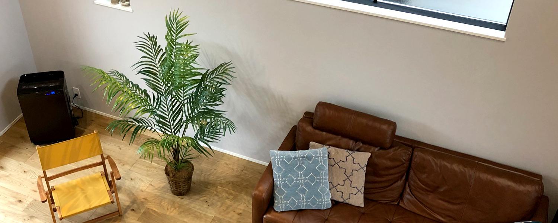 フェイクグリーン 雰囲気 ワイドに広がる植物